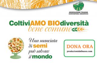 Banner_piccoli_campagna_biodiversità